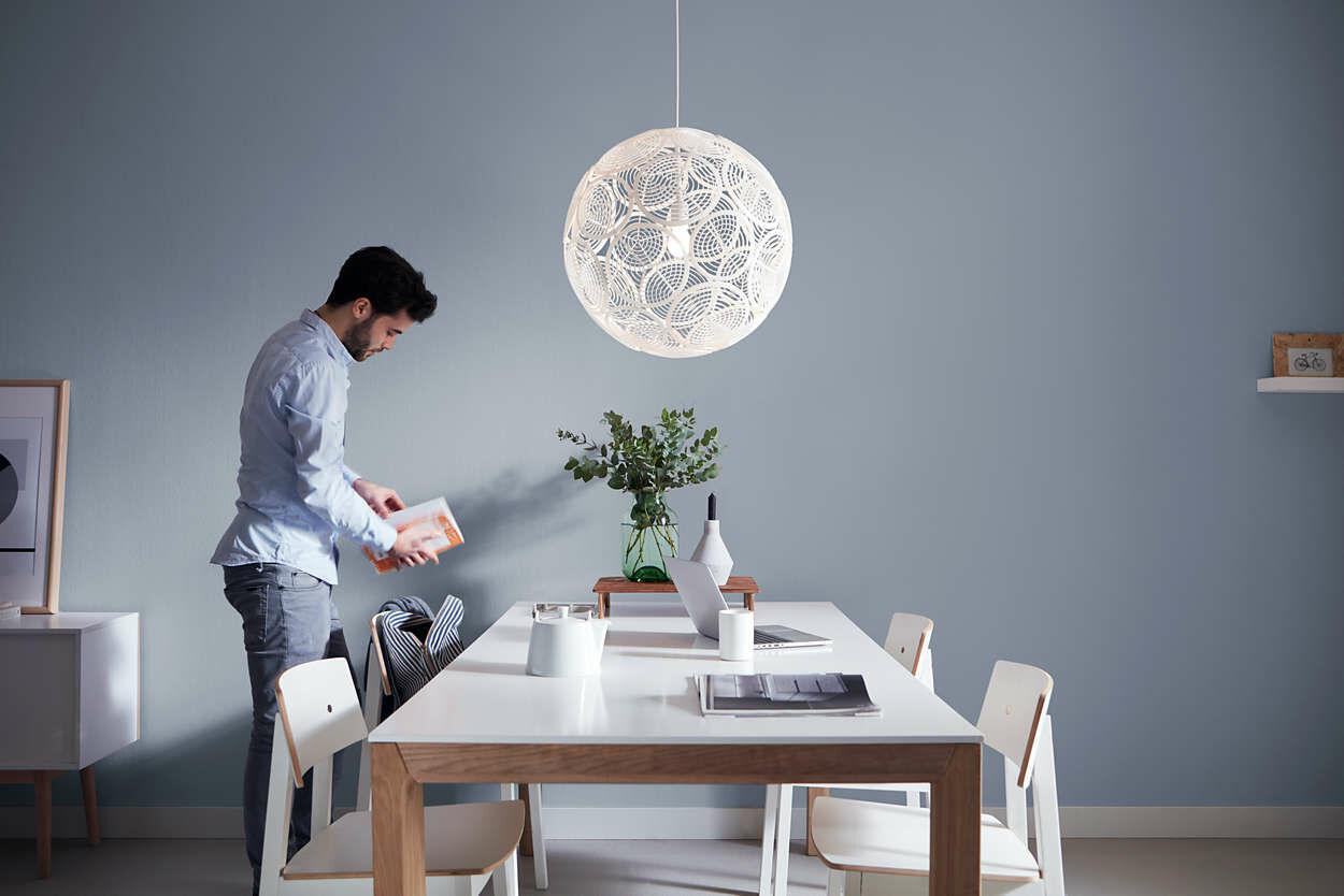 Philips Ring 50 cm lámpa E27 függeszték 4091331PN